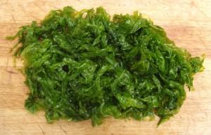 sea_lettuce