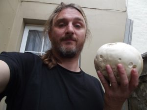 Giant Puffball (Calvatia gigantea)